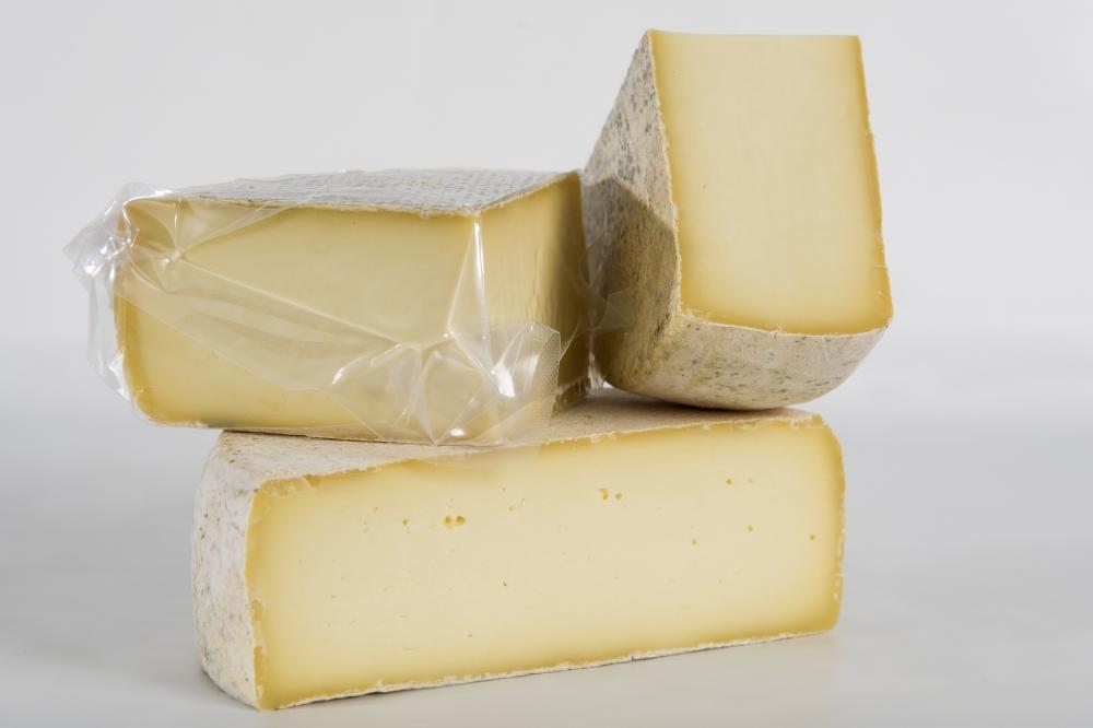 formaggio latteria trentino